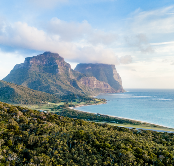 Seasonal Guides to Lord Howe Island